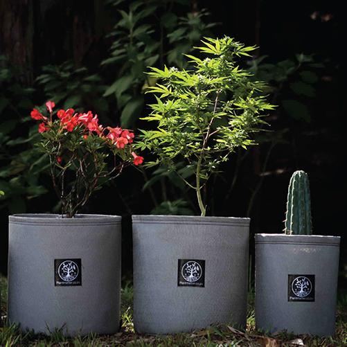 Plant-Matter-Grow-Bag-Flowers