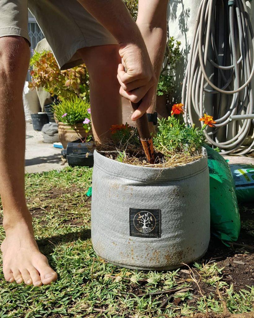 Plant-Matter-Standard-Grow-Bag